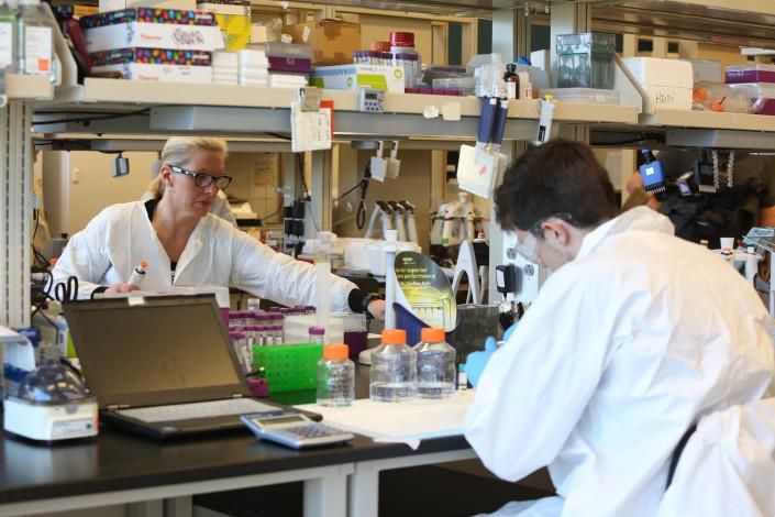Biogenerator lab workers
